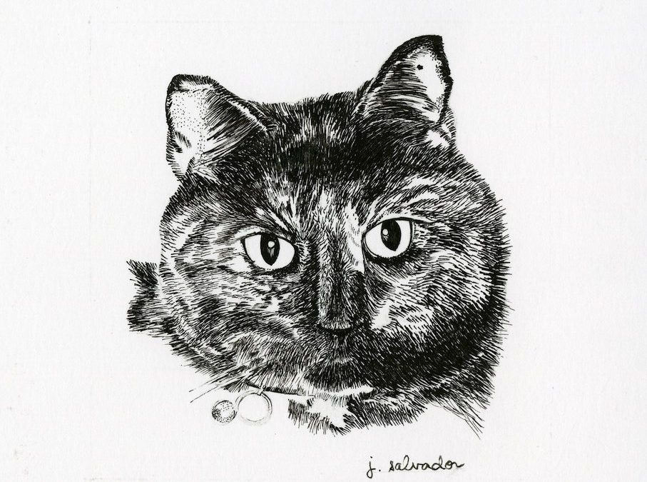 Cat Portrait in Memoriam